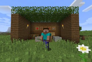 Building a virtual Sukkah inside Minecraft